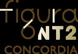 Figura NT2 logo